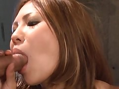Large brassiere buddies Oriental acquires her taut cookie thrashed in hot group sex